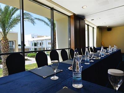 dndtravel-neptune-kos-conference